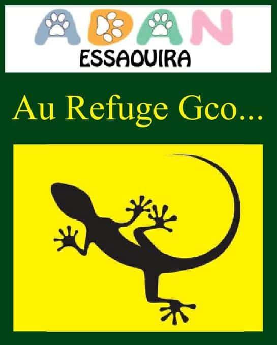 Au Refuge Gco – ADAN Essaouira