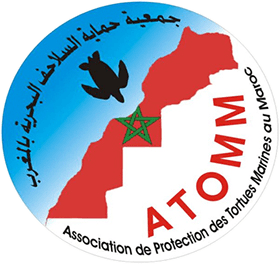 ATOMM - Association de protection des Tortues Marines au Maroc