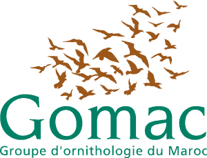 Gomac - Groupe d'ornithologie du Maroc